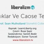 Dışsallıklar ve Coase Teoremi